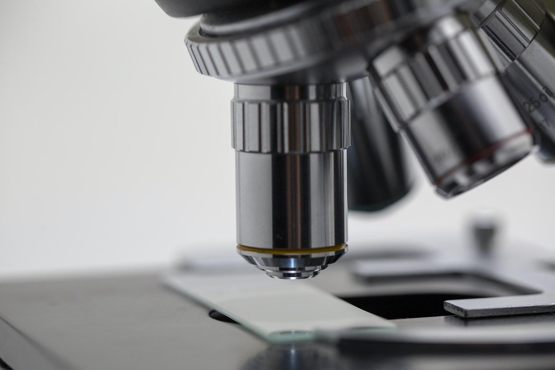 Biología y Biomedicina